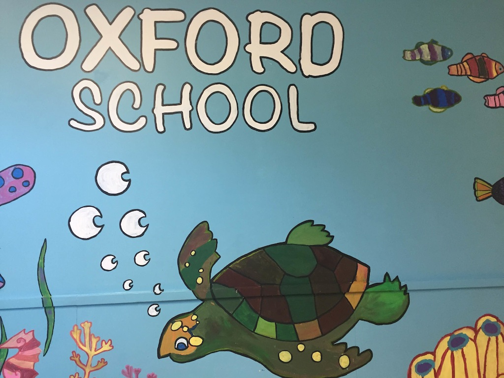 oxford turtle in the sea